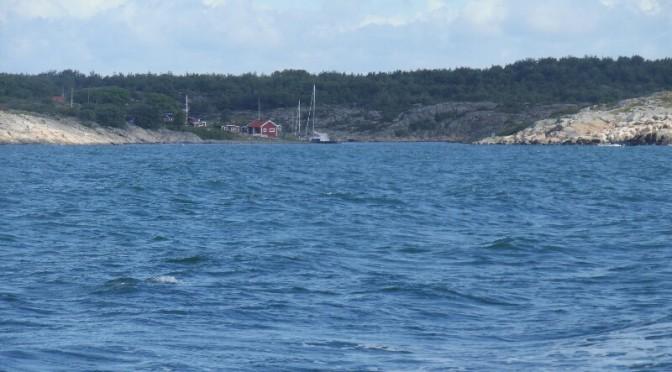 Die Dunstinsel