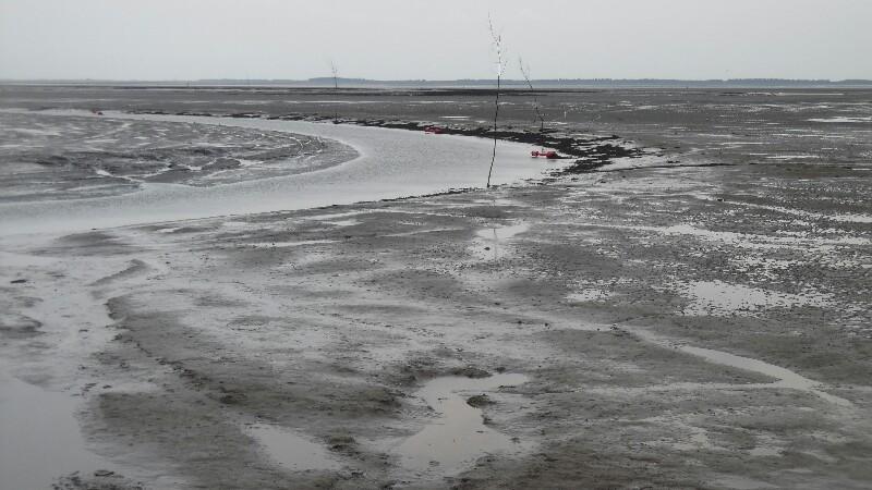 Zufahrt Schiermonnikoog bei Niedrigwasser